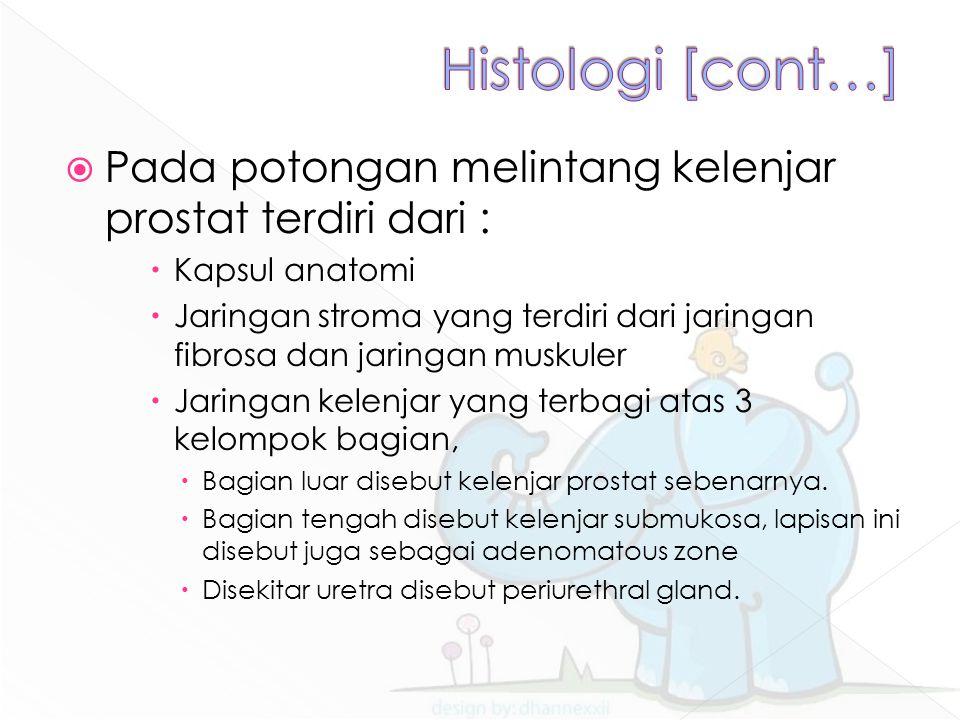 Histologi [cont…] Pada potongan melintang kelenjar prostat terdiri dari : Kapsul anatomi.
